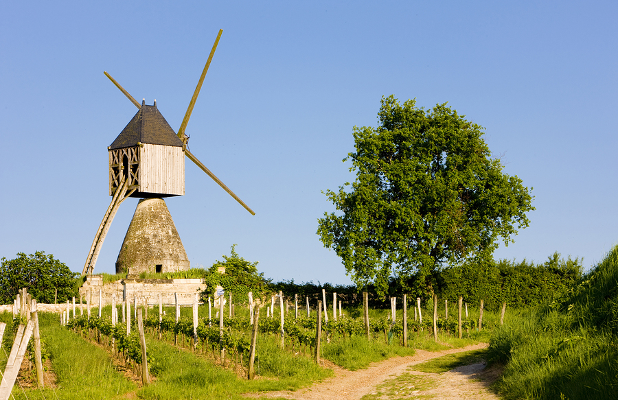 Loire Valley Gourmet Cycling Travel